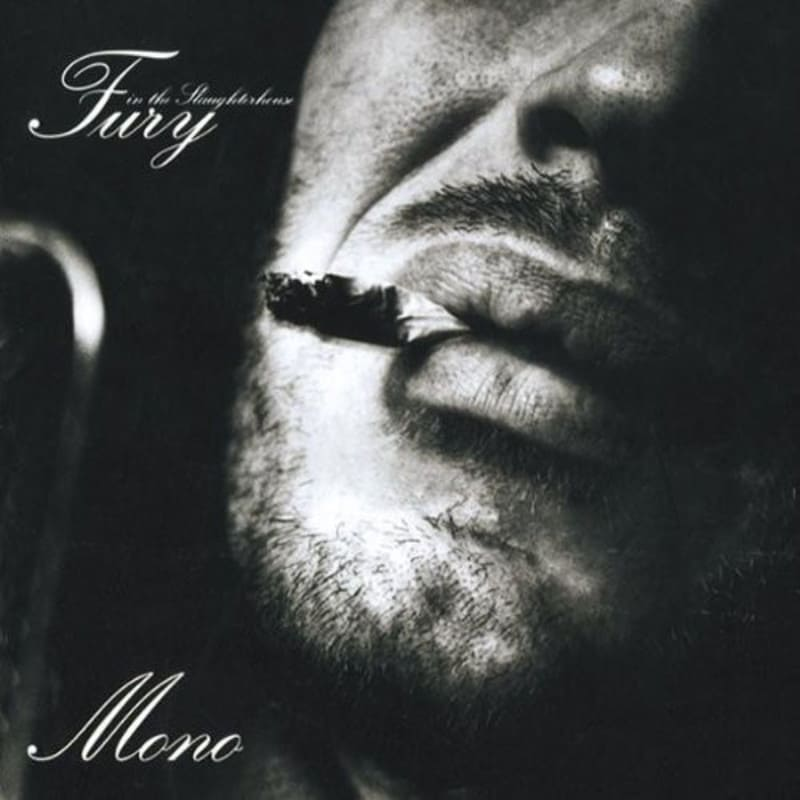 Fury In The Slaughterhouse - Mono